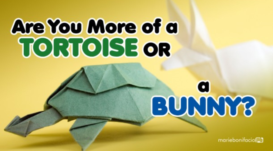 Are You More of a Tortoise or a Bunny?