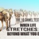 The Ten Camel Test: When Life Stretches You Beyond What you Expect